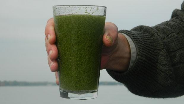 does stored water go bad? can you drink water that has algae and bacteria in it?