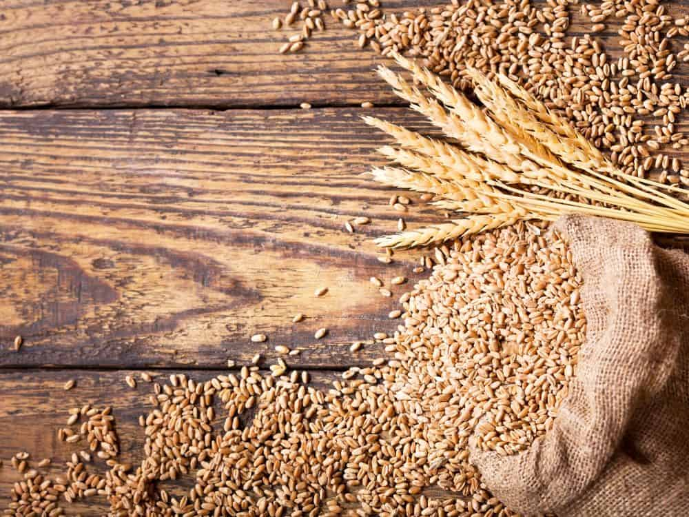 what is the best way to store wheat berries for long term food storage